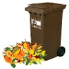 Image representing Spaces available on expanded South Holland garden waste collection scheme